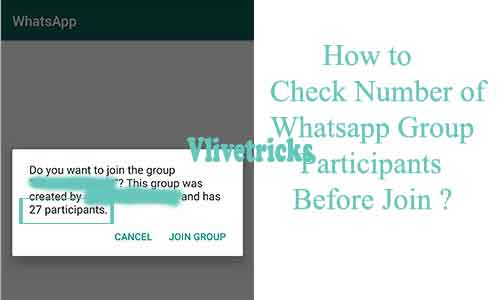 check number of whatsapp group participants