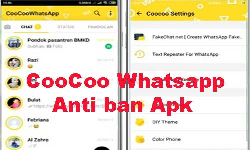 coocoo whatsapp app