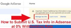united states tax info Declration form submit